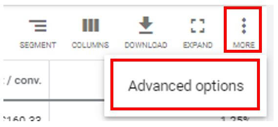 Ad Extensions - Advanced Options