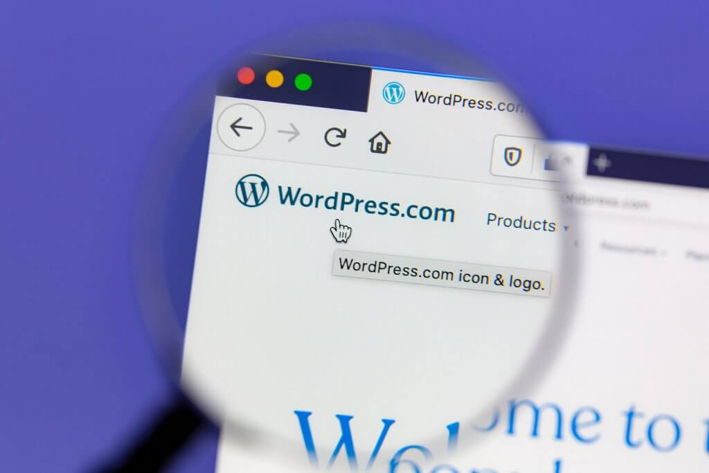 8 ways to use WordPress to improve Google Ads PPC advertising